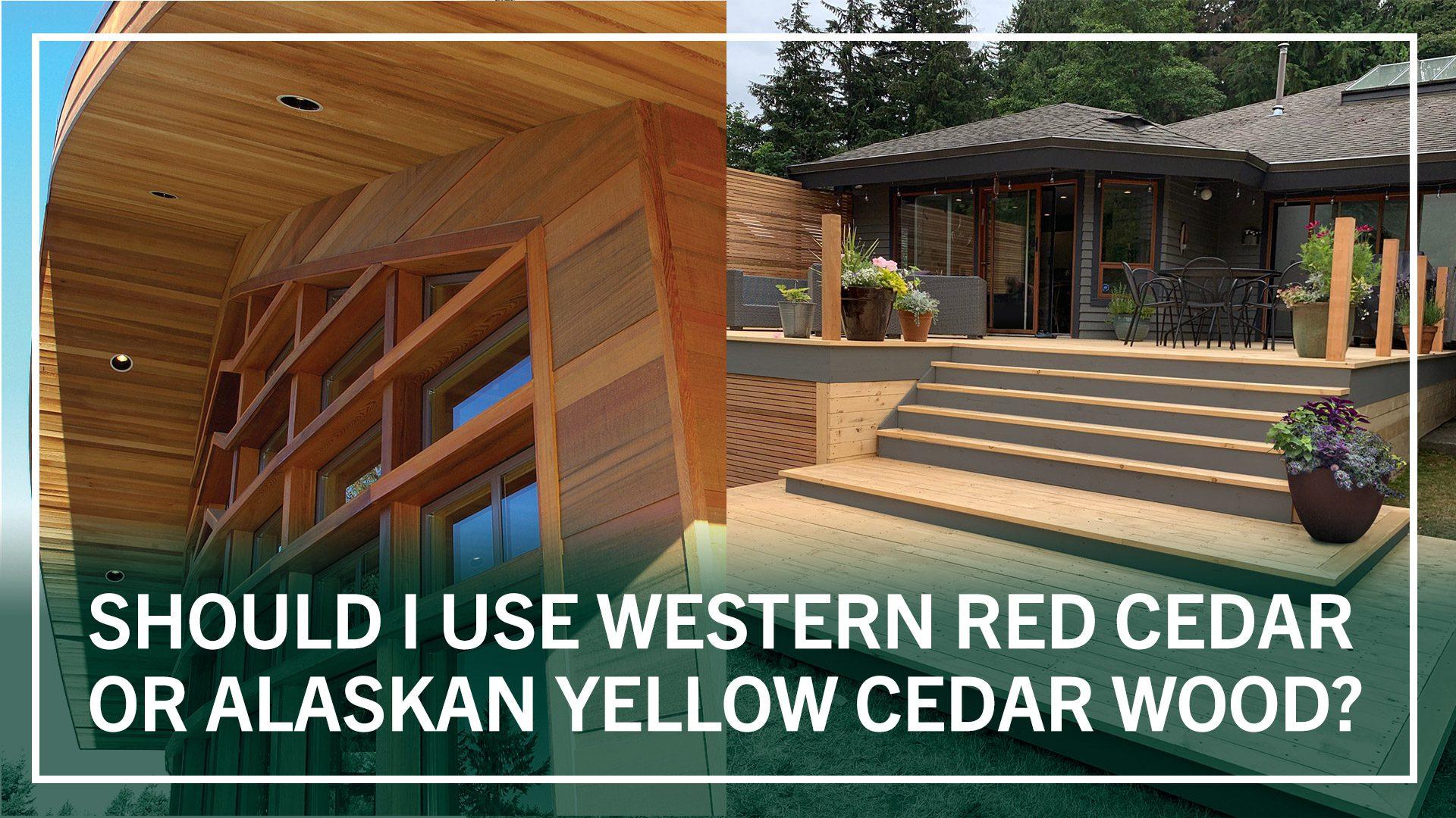 Types Of Cedar   Types Of Cedar Siding   Types Of Cedar Wood   Types Of Cedar Lumber